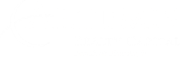 Artemis Realty Capital White Logo